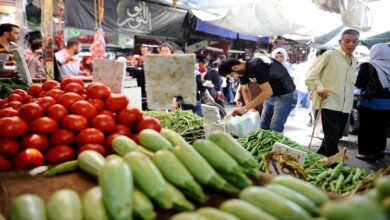 Photo of استقرار أسعار الفاكهة والخضر بأسواق مدينة قنا