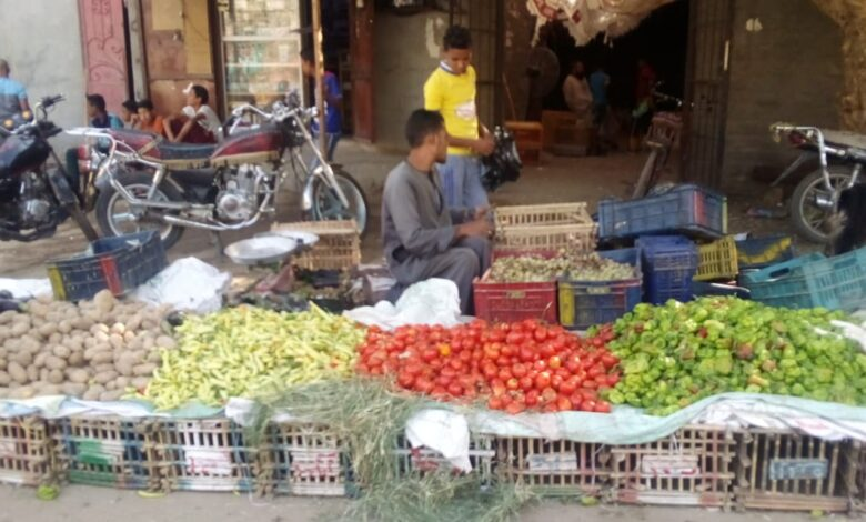 aljornal.com - الجورنال - أسعار الخضروات والفاكهة في أسواق الوقف – الشارع القنائي