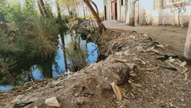 "Photo of صور ..أهالي ""النجمة والحمران"" بأبوتشت يطالبون بتطهير وتغطية مصرف ""العيلة"""