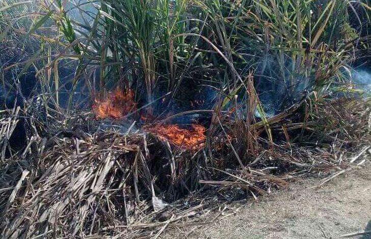 حريق-ضخم-يلتهم-نصف-فدان-من-زراعة-القصب-بقنا