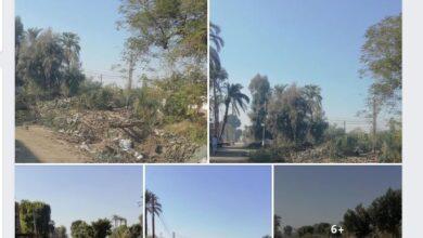 Photo of بالصور || مخلفات تطهير الترع تغلق مدخل وطريق جزيرة دندرة