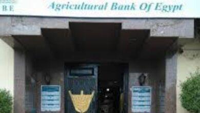 """Photo of """"نقيب فلاحين قنا"""" يثني على مبادرة البنك الزراعي لتسوية ديون المزارعين"""