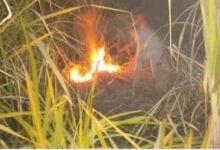 Photo of السيطرة على حريق نشب في زراعات قصب السكر بفرشوط
