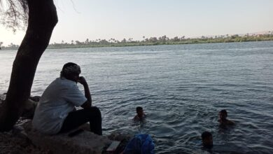 """Photo of أول أيام رمضان.. شباب يهربون من """"عطش الصوم"""" إلى مياه نهر النيل في نجع حمادي"""