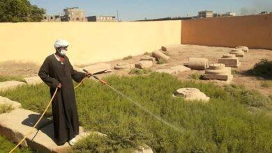 Photo of رش حشائش  العاقول بمنطقة آثار قفط بالمبيدات