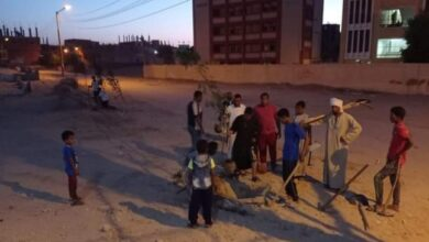 "Photo of بالجهود الذاتية .. شباب ""الحاج سلام"" بفرشوط يزرعون 70 شجرة بمقابر القرية"